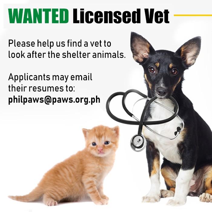 Clinic | Philippine Animal Welfare Society